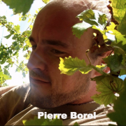 Pierre Borel